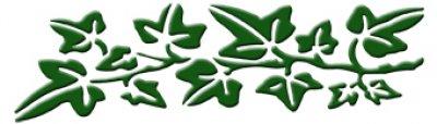 3D Wandschablone Efeuranke