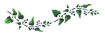 Wandschablone Blätterranke