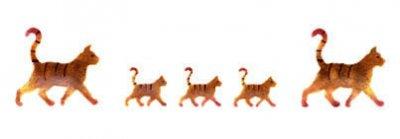 Wandschablone Katzen