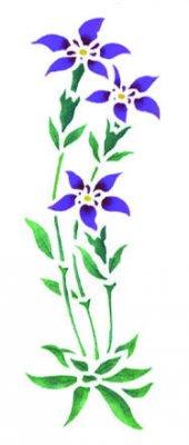 Wandschablone Feldblume